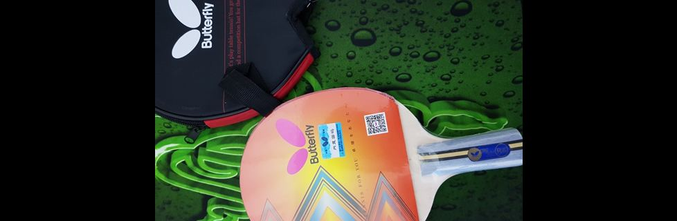 Best Ping Pong Paddle Case Butterfly Table Tennis Racket